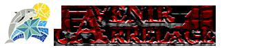 Logo de l'entreprise Avenir Carrelage